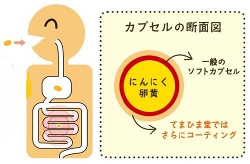 にんにく卵黄ニンニクゴーゴー 血液サラサラ にんにく効果 滋養強壮 アンチエイジング サプリメント 疲労回復 免疫力アップ 風邪予防 てまひま堂 夏バテ アラフォー 健康 おすすめ 口コミ0.jpg