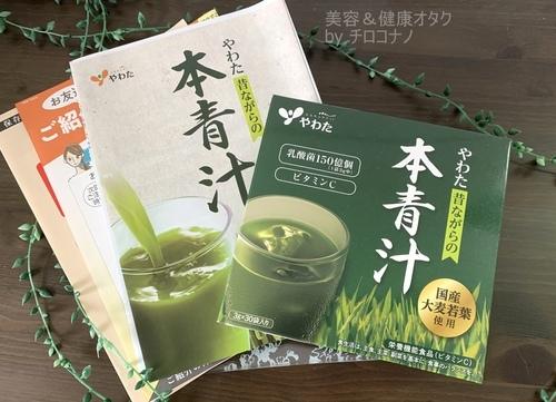 やわたの本青汁 冊子.JPG