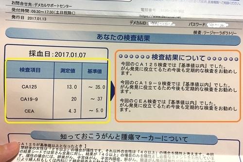 DEMECl デメカル血液検査キット 健康診断 簡単 がん検査 女性がん 口コミ11.JPG