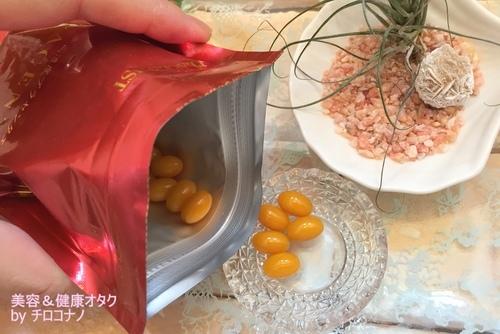 プラセンタ100 無料モニター 美容サプリメント 口コミ コラーゲン ヒアルロン酸3.JPG