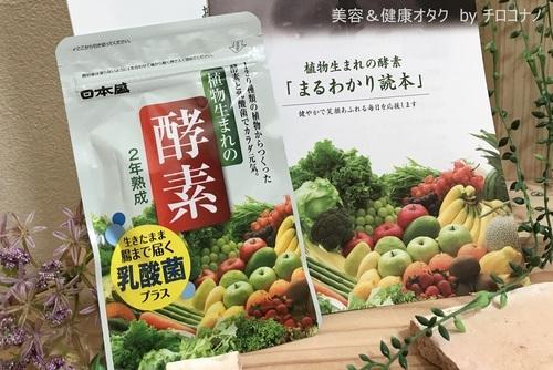 植物生まれの酵素 日本盛 発酵サプリメント 代謝アップ ダイエット 乳酸菌 便秘解消 疲労回復 口コミ1.JPG