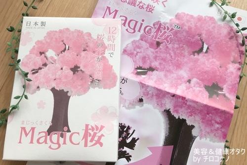 magic桜 プレゼント 贈り物 サプライズ Sakura 送料無料 口コミ2.JPG