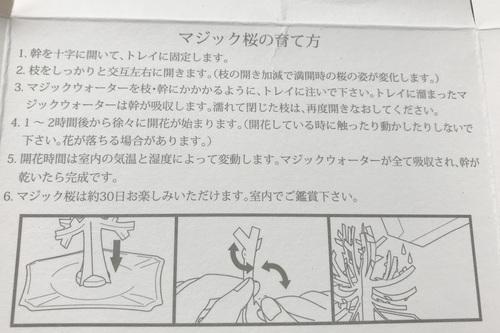 magic桜 プレゼント 贈り物 サプライズ Sakura 送料無料 口コミ4.JPG